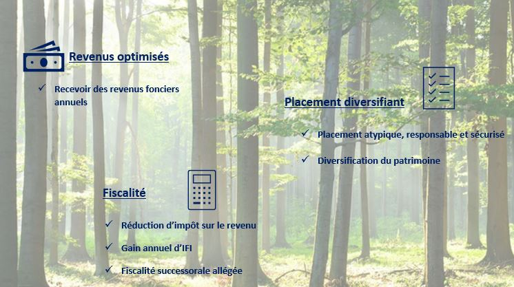 foret placement jpg