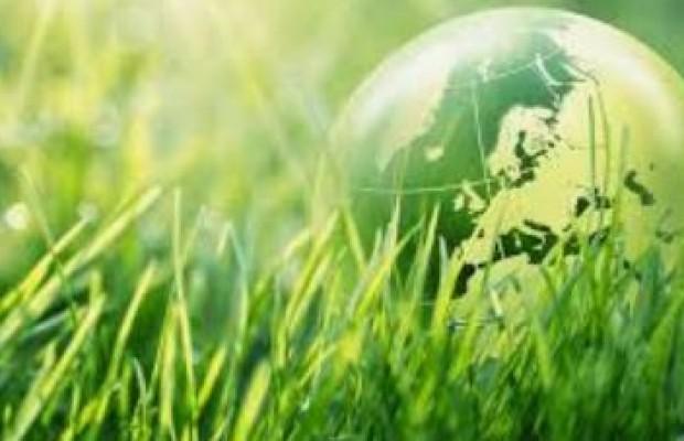 Et si vous investissiez dans un placement vert et engagé ?