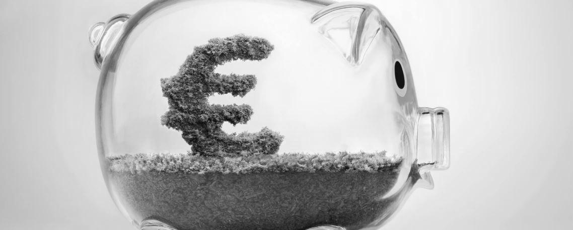 Quelles alternatives pour remplacer le Fonds Euro ?